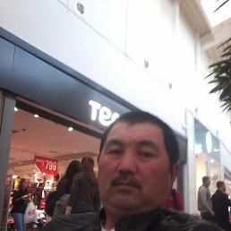 Нурик, 47 лет, Калининград