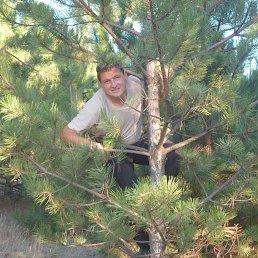 Алексей, 44 года, Беловодск