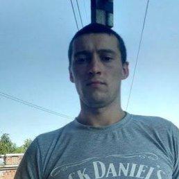 David, 29 лет, Санкт-Петербург