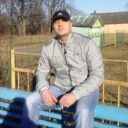 АЛЕКСЕЙ, 40 лет, Кириши
