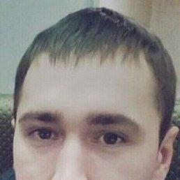 Игорь, 29 лет, Вологда
