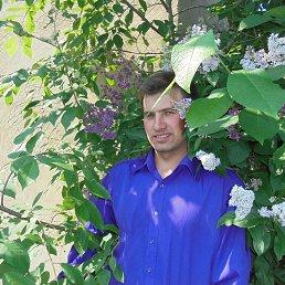 Дима, 29 лет, Новокиевский Увал
