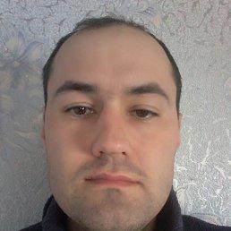 Саша, 30 лет, Полтава