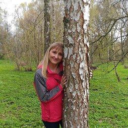 Дашуля, 37 лет, Нежин
