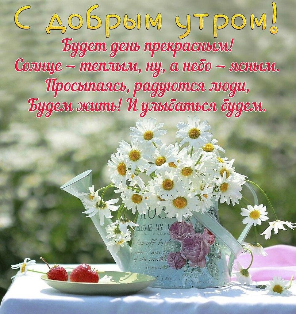 Пожелания счастливого доброго утра дня в картинке