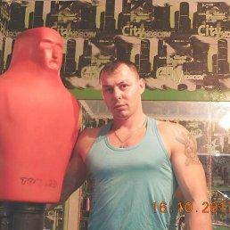 Антон, Заринск, 30 лет