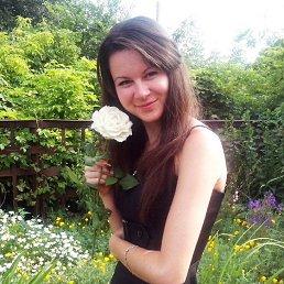 Алина, 28 лет, Кировоград