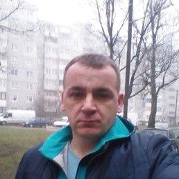 ВЛАДИМИР, 43 года, Калининград