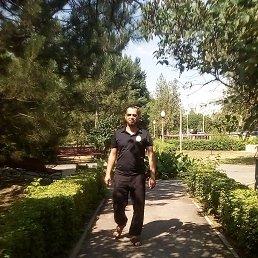 Тимур, Степное, 38 лет
