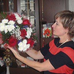 Светлана, 53 года, Волхов