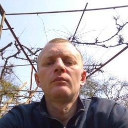 Виталий, 40 лет, Свалява