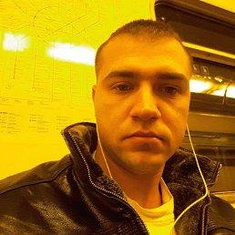 Михаил, 29 лет, Бронницы