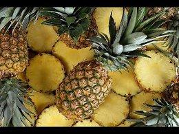 Как выращивают и собирают ананасы