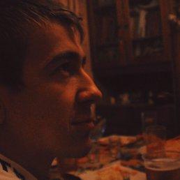 Макс, 28 лет, Суворов