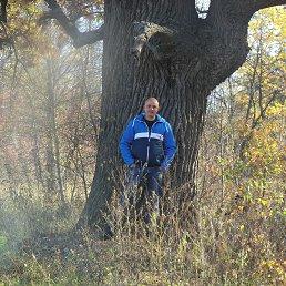 дима, 33 года, Доброполье