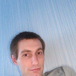 Дмитрий, 28 лет, Чехов