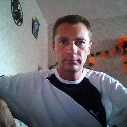 Николай, 49 лет, Крым