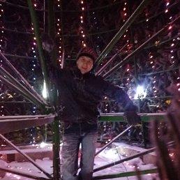 Николай, 35 лет, Весьегонск