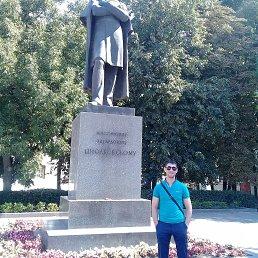 Марат, 32 года, Рязань