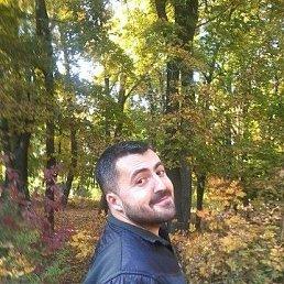 Роман, 37 лет, Харцызск