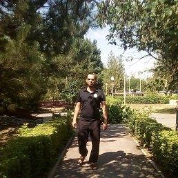 Тимур, 37 лет, Степное