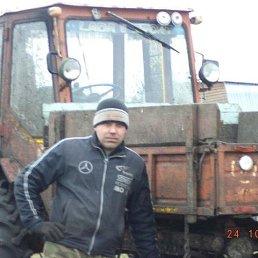 Сергей, 37 лет, Далматово