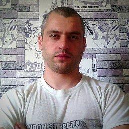 Александр, 35 лет, Антрацит
