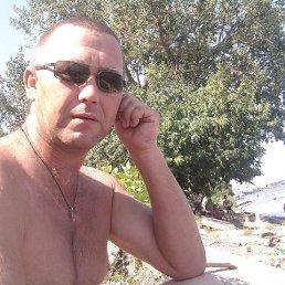 Александр, 44 года, Астрахань