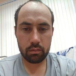 Батыр, 28 лет, Сосновый Бор