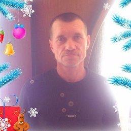 Сергей, 53 года, Струнино