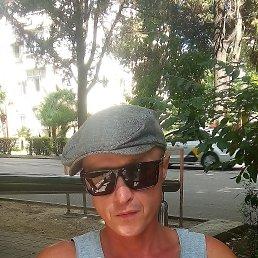 Максим, 38 лет, Сочи
