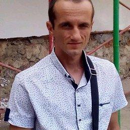 Андрей, 30 лет, Винница