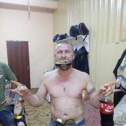 Владимир, 35 лет, Калининград