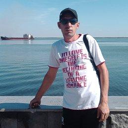 Николай, Краснодар, 39 лет