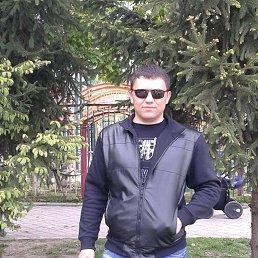Vitalii, 35 лет, Белая Церковь