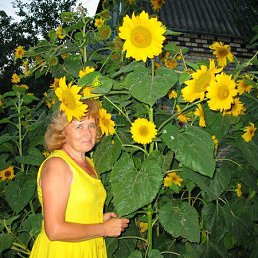 Розалия, 64 года, Хмельницкий