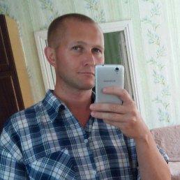 Андрей, 48 лет, Апрелевка