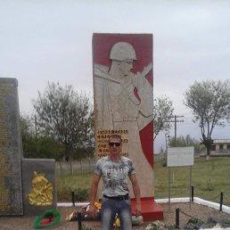 Aleksandr, 39 лет, Волгоград