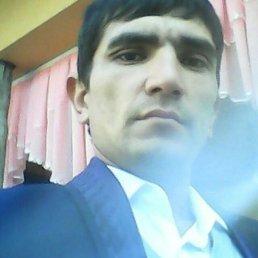 БЕК, 27 лет, Омск