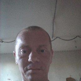 Ігор, 45 лет, Дубно