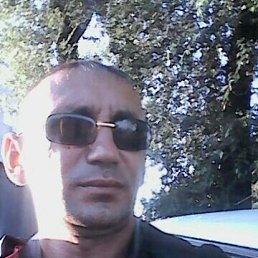 Андрей, 41 год, Усть-Донецкий