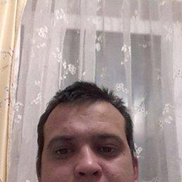 Павел, 36 лет, Пено