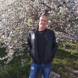 Павел, 41 год, Каменка-Днепровская