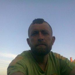 саня, 38 лет, Кировск