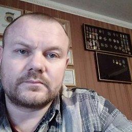 Владимир, 42 года, Вышгород