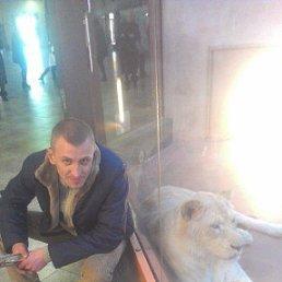 Виталий, 32 года, Гостомель