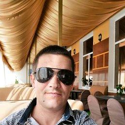 Анатолий, 33 года, Кочеток