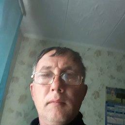 Анатолий, 48 лет, Красноград