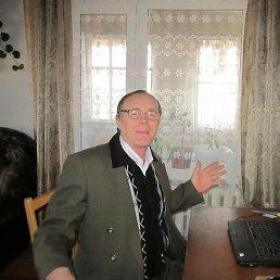 Михаил, 66 лет, Запорожье