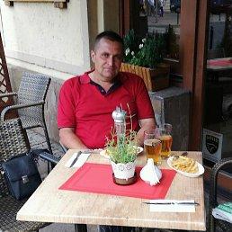 Сергей, 42 года, Одесса